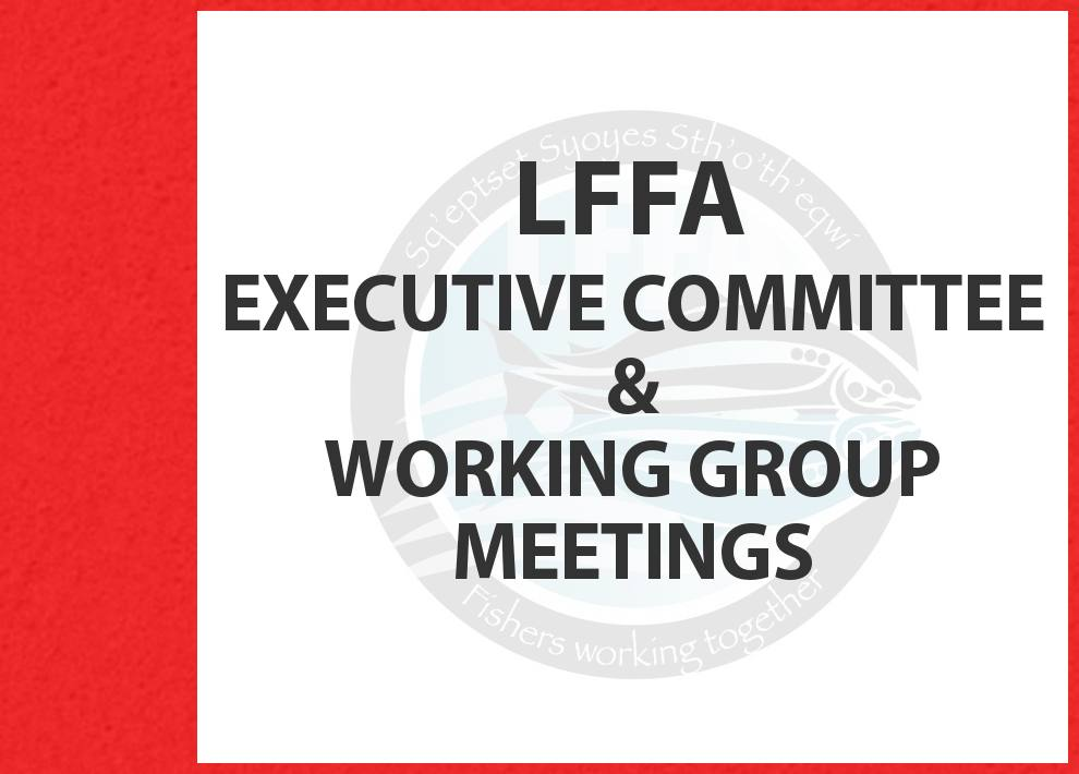 LFFA EC Meeting